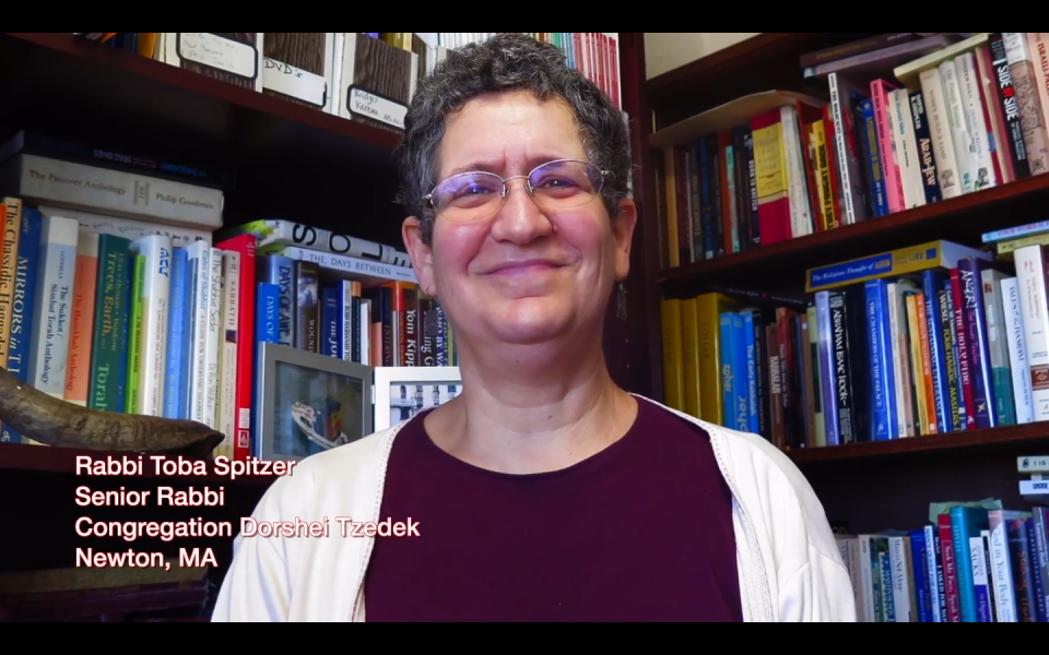 Toba Spitzer: An Anti-Jewish Rabbi